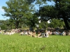 crowd_view_1